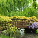 5 beautiful gardens to visit in London