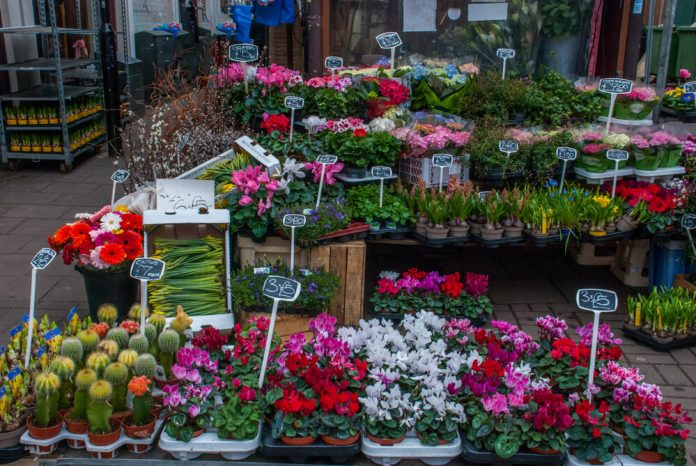 London's Most Exclusive Florists